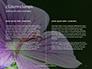 Violet Malva Flower Closeup Presentation slide 5