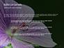 Violet Malva Flower Closeup Presentation slide 7