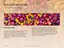 Colorful Bell Sweet Pepper Presentation slide 14