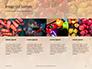 Colorful Bell Sweet Pepper Presentation slide 16