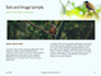 The Blue-Crowned Laughingthrush Among Tree Leaves Presentation slide 14