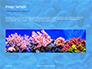 Coral Reef Macro Texture Presentation slide 10