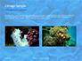 Coral Reef Macro Texture Presentation slide 11