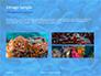 Coral Reef Macro Texture Presentation slide 12