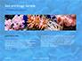Coral Reef Macro Texture Presentation slide 14