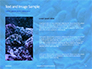 Coral Reef Macro Texture Presentation slide 15