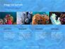 Coral Reef Macro Texture Presentation slide 16