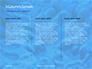 Coral Reef Macro Texture Presentation slide 6