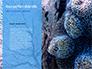 Coral Reef Macro Texture Presentation slide 9