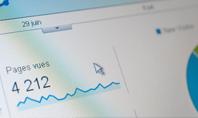Website Statistics Presentation Presentation Template