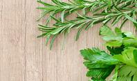 Fresh Herbs on Wooden Cutting Board Presentation Presentation Template