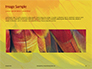 Colorful Background of Parrot Bird Feathers Presentation slide 10