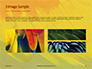 Colorful Background of Parrot Bird Feathers Presentation slide 12