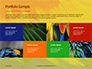 Colorful Background of Parrot Bird Feathers Presentation slide 17