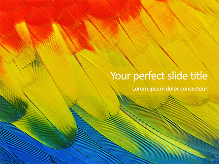 Colorful Background of Parrot Bird Feathers Presentation Presentation Template, Master Slide