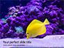 Yellow Tang Fish in Aquarium Presentation slide 1