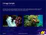 Yellow Tang Fish in Aquarium Presentation slide 11