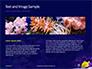 Yellow Tang Fish in Aquarium Presentation slide 14
