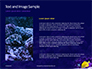 Yellow Tang Fish in Aquarium Presentation slide 15