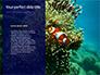 Yellow Tang Fish in Aquarium Presentation slide 9