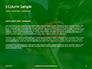 Firebug Pyrrhocoris Apterus on Green Twig Presentation slide 4