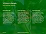 Firebug Pyrrhocoris Apterus on Green Twig Presentation slide 6