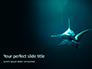 Hammerhead Shark in Deep Water Presentation slide 1