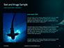Hammerhead Shark in Deep Water Presentation slide 15