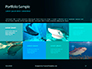 Hammerhead Shark in Deep Water Presentation slide 17