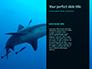 Hammerhead Shark in Deep Water Presentation slide 9