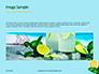 Cucumber Lemon and Mint Water Presentation slide 10