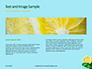 Cucumber Lemon and Mint Water Presentation slide 14