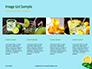 Cucumber Lemon and Mint Water Presentation slide 16