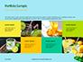 Cucumber Lemon and Mint Water Presentation slide 17
