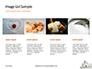 Lump Sugar Cubes Presentation slide 16