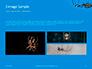 Big Garden Spider on Cobweb Presentation slide 12