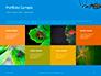 Big Garden Spider on Cobweb Presentation slide 17