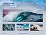 Ocean Surf Foam Presentation slide 13
