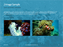 Underwater Coral Reef and Tropical Fish Presentation slide 11