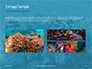 Underwater Coral Reef and Tropical Fish Presentation slide 12