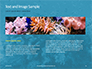 Underwater Coral Reef and Tropical Fish Presentation slide 14