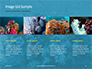 Underwater Coral Reef and Tropical Fish Presentation slide 16