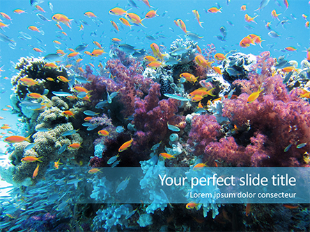 Underwater Coral Reef and Tropical Fish Presentation Presentation Template, Master Slide