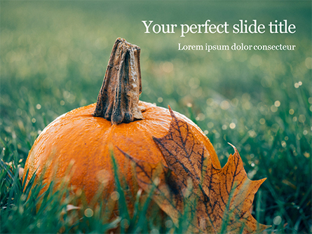 Small Pumpkin in the Grass Presentation Presentation Template, Master Slide