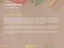 Frame of Organic Vegetables Presentation slide 4
