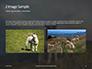Female Sheep with Lamb Presentation slide 11