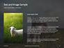 Female Sheep with Lamb Presentation slide 15