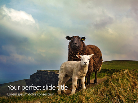 Female Sheep with Lamb Presentation Presentation Template, Master Slide
