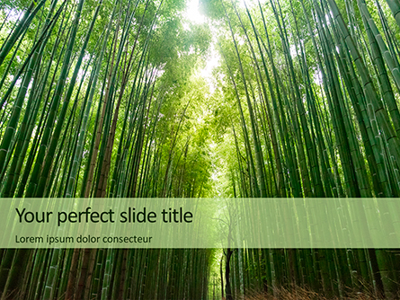 Green Bamboo Trees Presentation Presentation Template, Master Slide