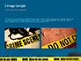 Crime Scene on a Highway Presentation slide 11